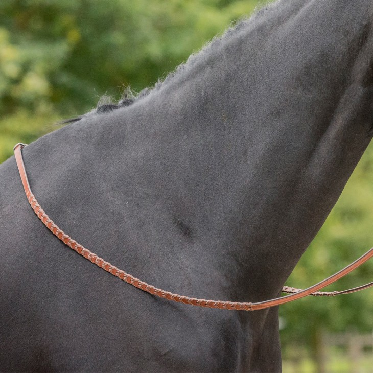 Laced reins - Bruno Delgrange
