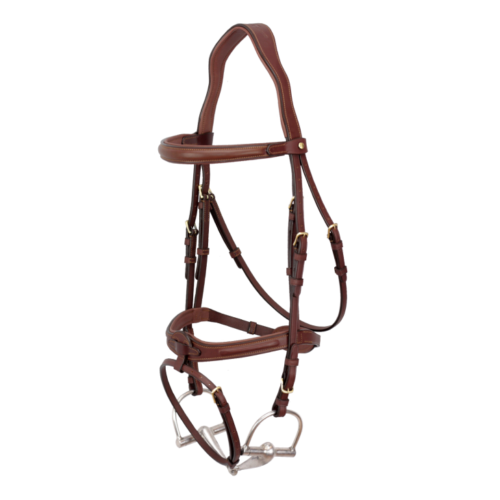 Snaffle bridle flash noseband