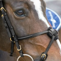 Snaffle bridle figure eight